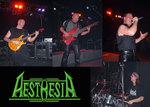 AESTHESIA