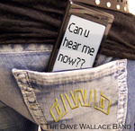 The Dave Wallace Band