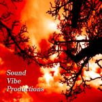 Mr ProJingles - Sound Vibe Productions
