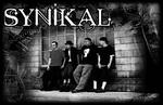 Synikal