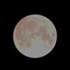 Borealis (music bed) on Super Moon Nov 2016