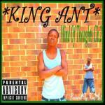 KingAnt