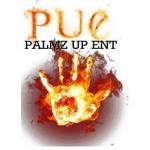 Palmz Up Entertainment