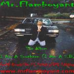 Mr.Flamboyant