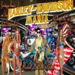 Harley Davidson Mania by Michael LeRock Rhodes