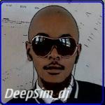 DJDeepSim