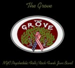 The Grove - feat. Noah Lehrman on drums