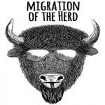 Migration of the Herd