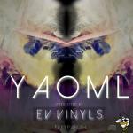 Ev Vinyls