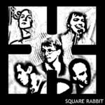 square rabbit