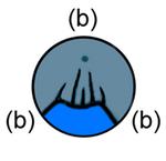 (b)ananartista