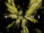 Styrus
