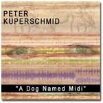 Peter Kuperschmid Band