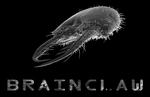 Brainclaw