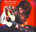 Ali Handal