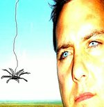 Spider and I