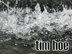 Tim Hoe