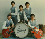 Gelboys