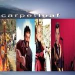 carpetloaf
